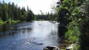 Chase Rapids / Bissonette Bridge - Allagash River