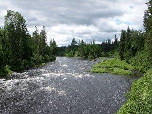 Upper Big Black river